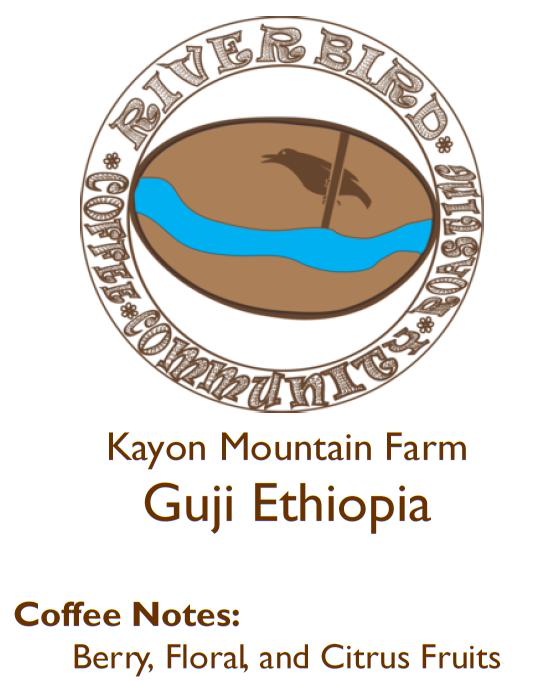 cover photo Kayon Ethiopia